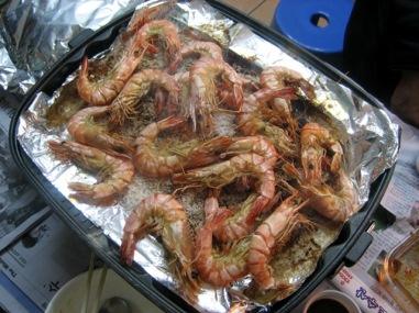 t_shrimp01