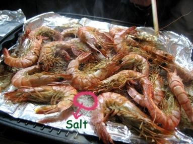 t_shrimp03